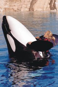 Sea World Group Tickets